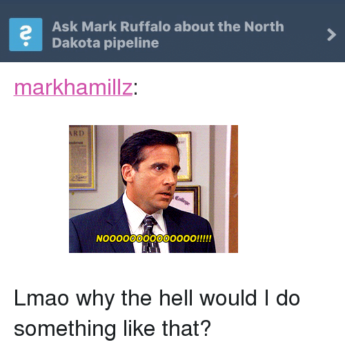 "Dakota Pipeline: Ask Mark Ruffalo about the North  Dakota pipeline <p><a href=""http://markhamillz.tumblr.com/post/154108559726"" class=""tumblr_blog"">markhamillz</a>:</p>  <blockquote><figure class=""tmblr-full"" data-orig-width=""245"" data-orig-height=""185"" data-tumblr-attribution=""leatherjacketrenegade67:q1GWKDphacF1mgeAdckEeg:ZSTZ_l1wtlG1-"" data-orig-src=""https://78.media.tumblr.com/71c9c370e96b6080185064be6c0899eb/tumblr_nwt8ugbrxK1u44gfjo1_250.gif""><img src=""https://78.media.tumblr.com/71c9c370e96b6080185064be6c0899eb/tumblr_inline_ohr1l3Cx6K1rqjiip_500.gif"" data-orig-width=""245"" data-orig-height=""185"" data-orig-src=""https://78.media.tumblr.com/71c9c370e96b6080185064be6c0899eb/tumblr_nwt8ugbrxK1u44gfjo1_250.gif""/></figure></blockquote>  <p>Lmao why the hell would I do something like that?</p>"