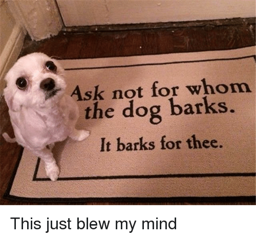 Blew My Mind: Ask not for whom  the dog barks.  It barks for thee. This just blew my mind