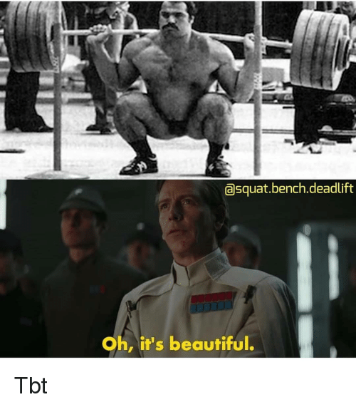 Beautiful, Memes, and Tbt: asquat.bench.deadlift  Oh, it's beautiful. Tbt