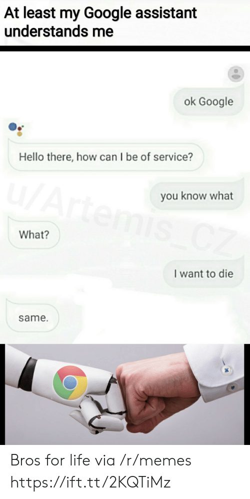Google, Hello, and Life: At least my Google assistant  understands me  ok Google  Hello there, how can I be of service?  u/Artemis CZ  you know what  What?  I want to die  same. Bros for life via /r/memes https://ift.tt/2KQTiMz