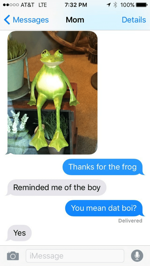 Dat Boi: AT&T LTE 7:32 PM  1*100%  Messages Mom  Details  Thanks for the frog  Reminded me of the boy  You mean dat boi?  Delivered  Yes  Message