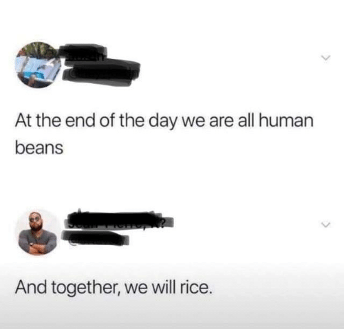 Dank, 🤖, and Human: At the end of the day we are all human  beans  And together, we will rice.