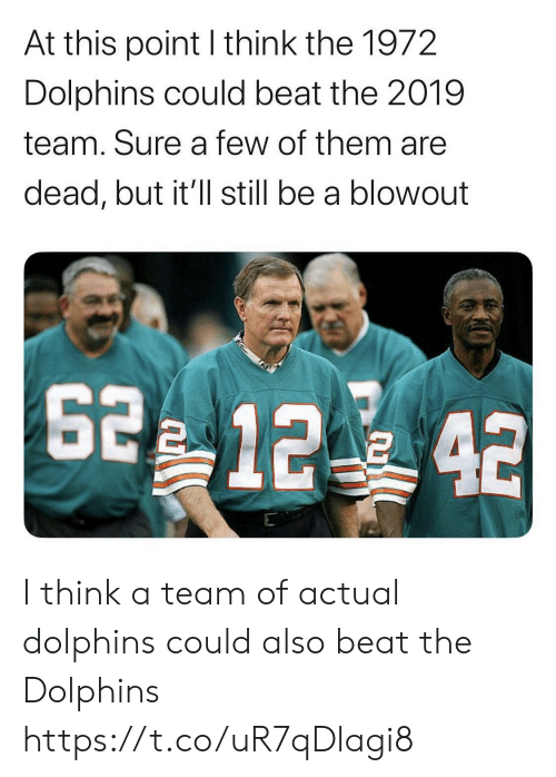 Dolphins: At this point I think the 1972  Dolphins could beat the 2019  team. Sure a few of them are  dead, but it'll still be a blowout  2 12 42 I think a team of actual dolphins could also beat the Dolphins https://t.co/uR7qDlagi8