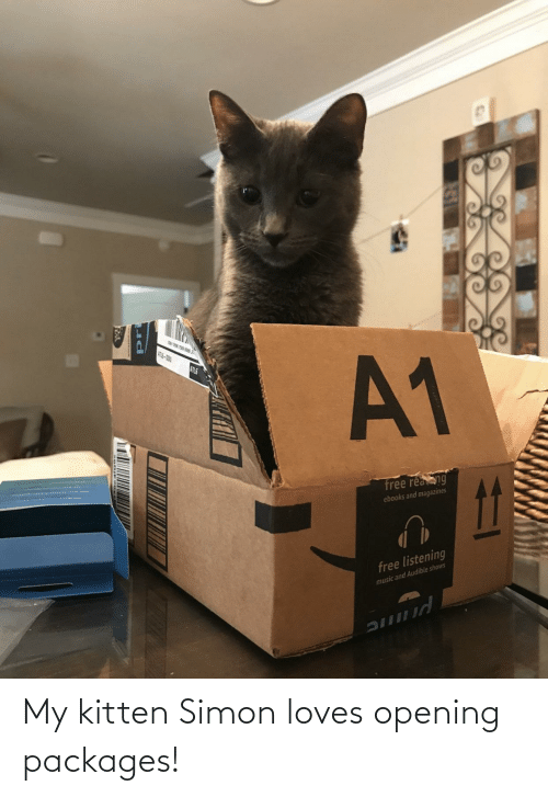 Dou: ATL-DOU  A1  ATLS  free reang  ebooks and magazines  free listening  music and Audible shows My kitten Simon loves opening packages!