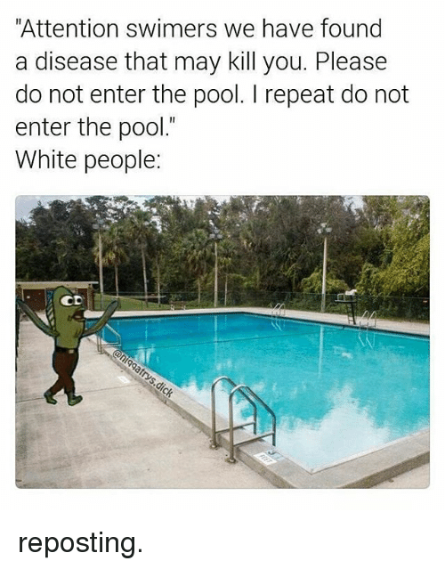 "attentive: ""Attention swimers we have found  a disease that may kill you. Please  do not enter the pool. repeat do not  enter the pool.""  White people  CD reposting."