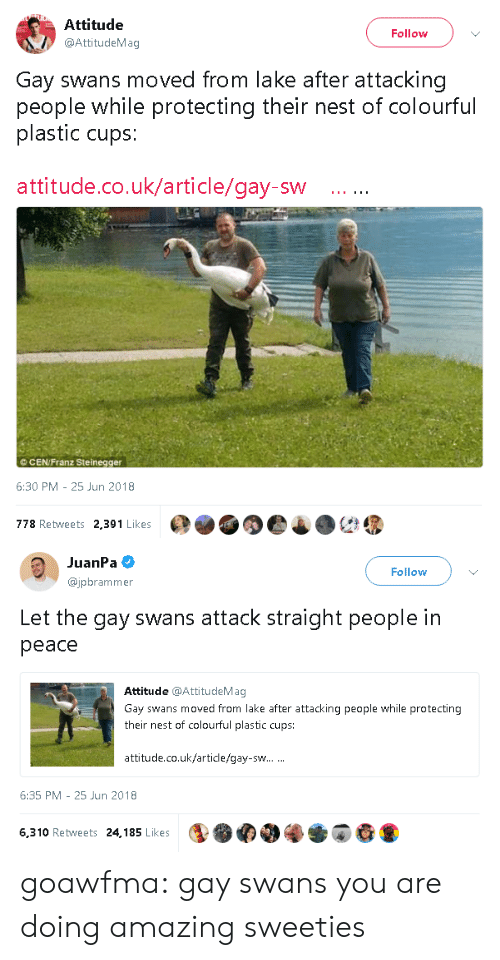 Colourful: Attitude  @AttitudeMag  Follow  Gay swans moved from lake after attacking  people while protecting their nest of colourful  plastic cups:  attitude.co.uk/article/gay-sw  ©CEN/Franz Steinegger  6:30 PM-25 Jun 2018  778 Retweets 2,391 Likes   JuanPa  @jpbrammer  Follow  Let the gay swans attack straight people in  peace  Attitude @AttitudeMag  Gay swans moved from lake after attacking people while protecting  their nest of colourful plastic cups:  attitude.co.uk/article/gay-sw  6:35 PM 25 Jun 2018  6,310 Retweets 24,185 Likes goawfma: gay swans you are doing amazing sweeties