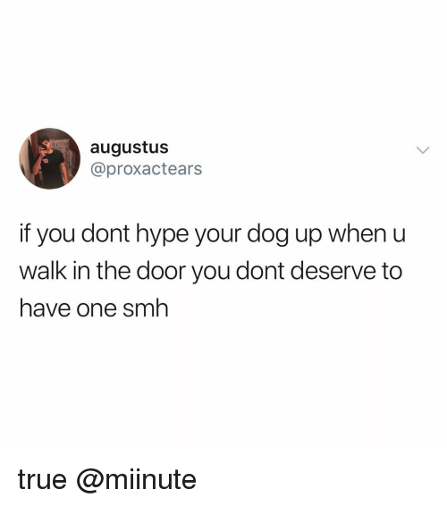 Hype, Memes, and True: augustus  @proxactears  if you dont hype your dog up when u  walk in the door you dont deserve to  have one snh true @miinute