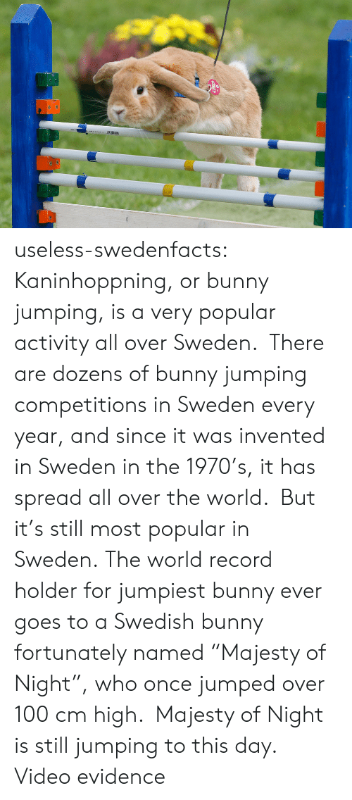 "Record Holder: AUR useless-swedenfacts:  Kaninhoppning, or bunny jumping, is a very popular activity all over Sweden.  There are dozens of bunny jumping competitions in Sweden every year, and since it was invented in Sweden in the 1970's, it has spread all over the world.  But it's still most popular in Sweden. The world record holder for jumpiest bunny ever goes to a Swedish bunny fortunately named ""Majesty of Night"", who once jumped over 100 cm high.  Majesty of Night is still jumping to this day.   Video evidence"