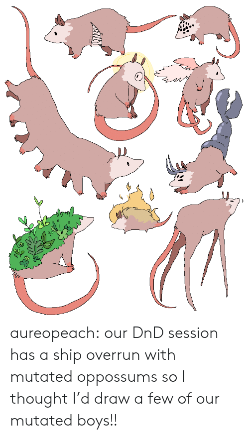 Tumblr, Blog, and DnD: aureopeach: our DnD session has a ship overrun with mutated oppossums so I thought I'd draw a few of our mutated boys!!