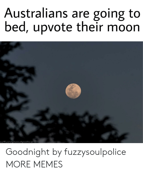 Dank, Memes, and Target: Australians are going to  bed, upvote their moon  u/fuzzysoulpolice Goodnight by fuzzysoulpolice MORE MEMES