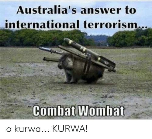International, Polandball, and Terrorism: Australia's answer to  international terrorism...  Combat Wombat o kurwa... KURWA!