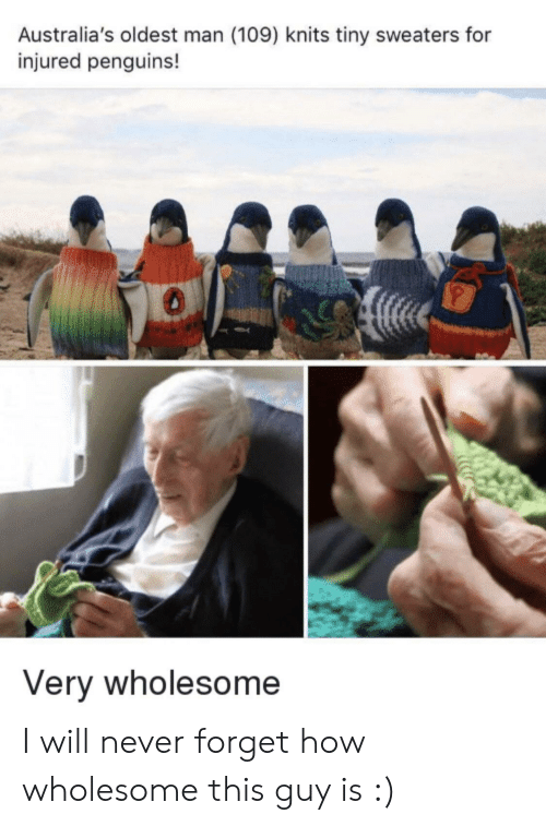 Penguins, Wholesome, and Never: Australia's oldest man (109) knits tiny sweaters for  injured penguins!  Very wholesome I will never forget how wholesome this guy is :)