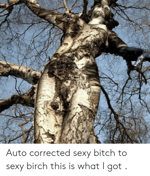 Bitch, Sexy, and Got: Auto corrected sexy bitch to sexy birch this is what I got .