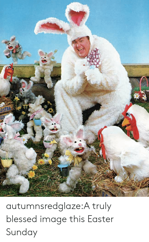 Blessed, Easter, and Tumblr: autumnsredglaze:A truly blessed image this Easter Sunday