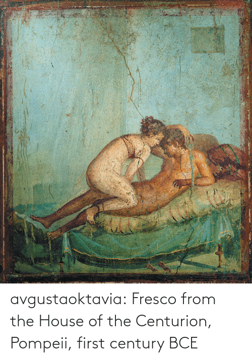 the house: avgustaoktavia:   Fresco from the House of the Centurion, Pompeii, first century BCE