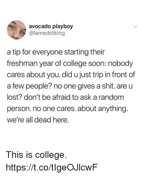 Freshman Year: avocado playboy  @lamedotking  a tip for everyone starting their  freshman year of college soon: nobody  cares about you. did u just trip in front of  a few people? no one gives a shit. are u  lost? don't be afraid to ask a random  person. no one cares. about anything  we're all dead here This is college. https://t.co/tIgeOJlcwF