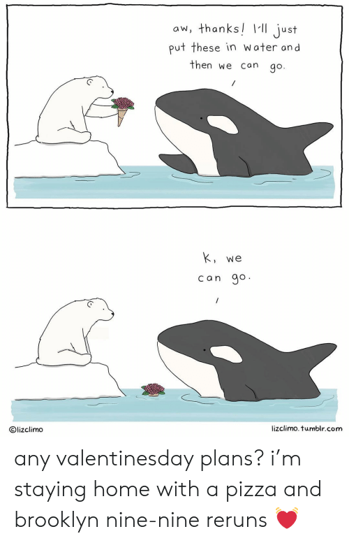 Lizclimo Tumblr: aw, thanks ust  put these in water and  then we can go.  We  can go  Olizclimo  lizclimo. tumblr.com any valentinesday plans? i'm staying home with a pizza and brooklyn nine-nine reruns 💓