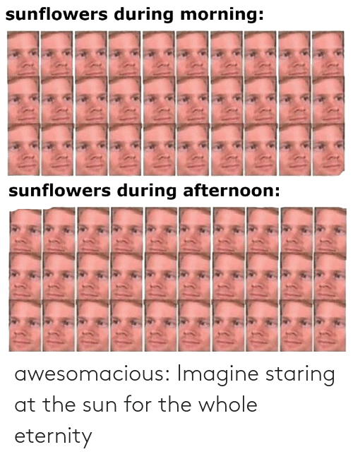 Tumblr Com: awesomacious:  Imagine staring at the sun for the whole eternity