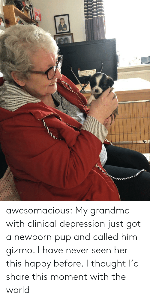 Clinical: awesomacious:  My grandma with clinical depression just got a newborn pup and called him gizmo. I have never seen her this happy before. I thought I'd share this moment with the world