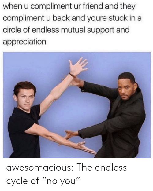 """Cycle: awesomacious:  The endless cycle of """"no you"""""""