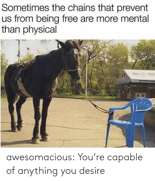 anything: awesomacious:  You're capable of anything you desire