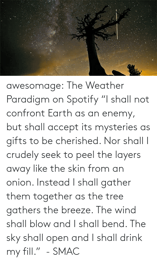 "sky: awesomage:   The Weather Paradigm on Spotify   ""I shall not confront Earth as an enemy, but shall accept its mysteries as gifts to be cherished. Nor shall I crudely seek to peel the layers away like the skin from an onion. Instead I shall gather them together as the tree gathers the breeze. The wind shall blow and I shall bend. The sky shall open and I shall drink my fill.""  - SMAC"