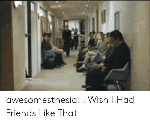 Wish I Had Friends: awesomesthesia:  I Wish I Had Friends Like That