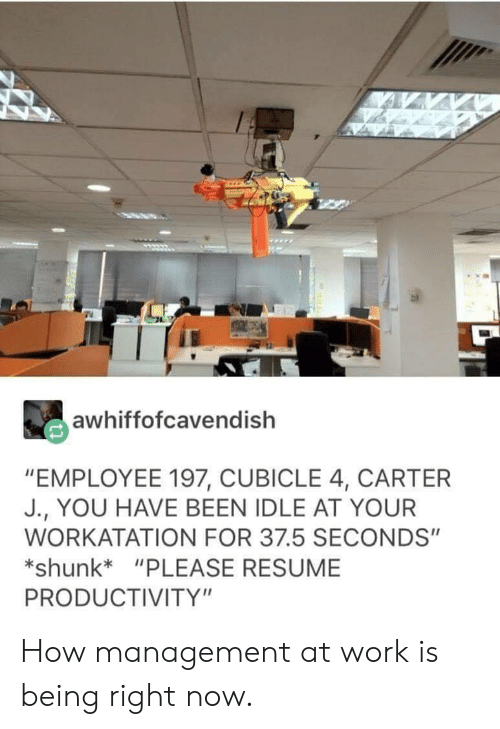 """Work, Resume, and Been: awhiffofcavendish  """"EMPLOYEE 197, CUBICLE 4, CARTER  J., YOU HAVE BEEN IDLE AT YOUR  WORKATATION FOR 37.5 SECONDS""""  shunk*""""PLEASE RESUME  PRODUCTIVITY"""" How management at work is being right now."""