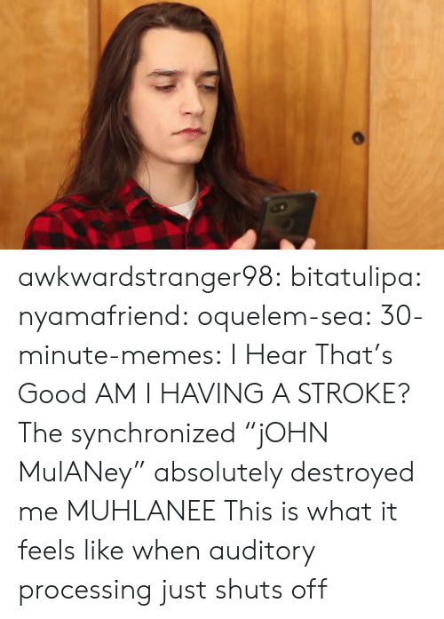 "I Hear That: awkwardstranger98: bitatulipa:  nyamafriend:   oquelem-sea:  30-minute-memes: I Hear That's Good  AM I HAVING A STROKE?  The synchronized ""jOHN MulANey"" absolutely destroyed me   MUHLANEE   This is what it feels like when auditory processing just shuts off"