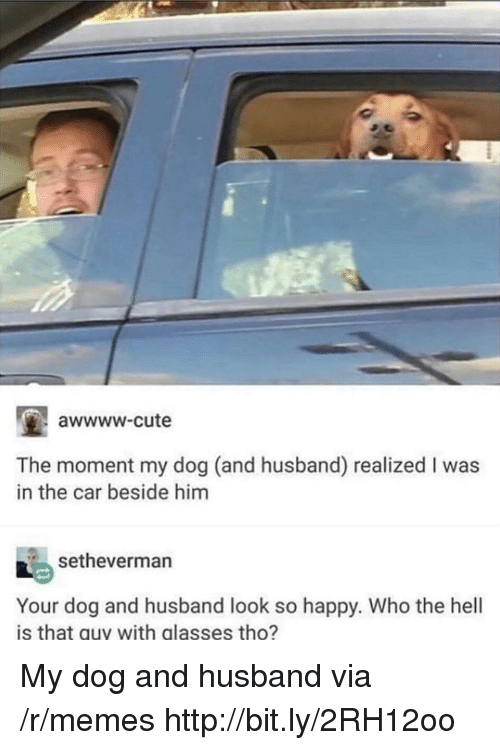 Awwww Cute: awwww-cute  The moment my dog (and husband) realized I was  in the car beside him  setheverman  Your dog and husband look so happy. Who the hell  is that guy with glasses tho? My dog and husband via /r/memes http://bit.ly/2RH12oo