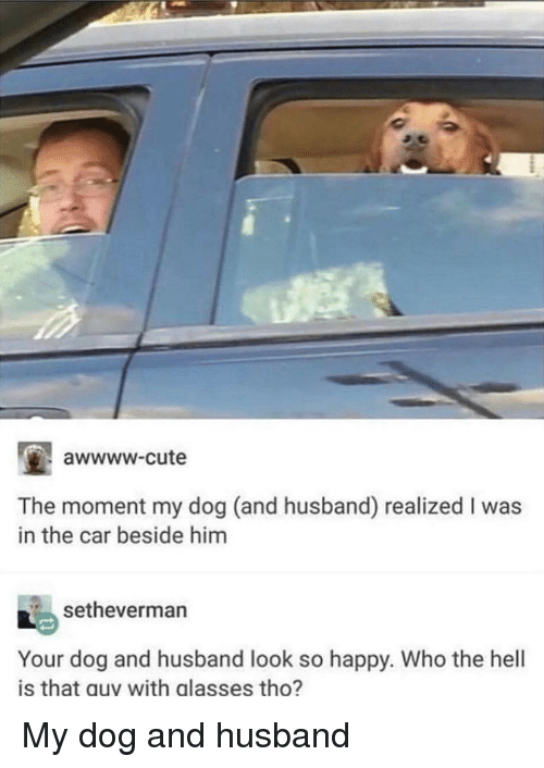 Awwww Cute: awwww-cute  The moment my dog (and husband) realized I was  in the car beside him  setheverman  Your dog and husband look so happy. Who the hell  is that guy with glasses tho? My dog and husband