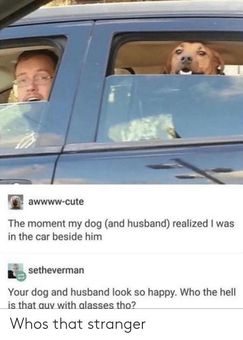 Awwww Cute: awwww-cute  The moment my dog (and husband) realized I was  in the car beside him  setheverman  Your dog and husband look so happy. Who the hell  is that auy with glasses tho? Whos that stranger