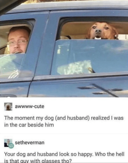 Awwww Cute: awwww.cute  The moment my dog (and husband) realized I was  in the car beside him  setheverman  Your dog and husband look so happy. Who the hell  is that auy with alasses tho?