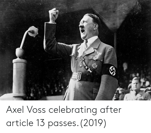 Article, Voss, and Celebrating: Axel Voss celebrating after article 13 passes.(2019)