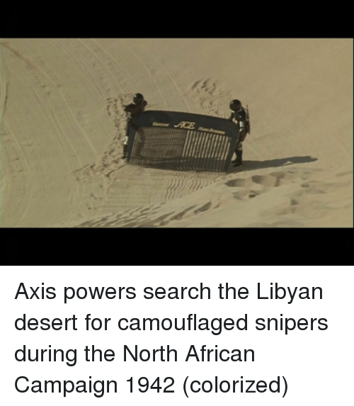axis powers: Axis powers search the Libyan desert for camouflaged snipers during the North African Campaign 1942 (colorized)