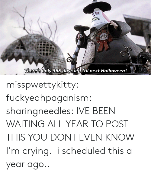 Crying, Halloween, and Tumblr: AYOR  There's only 365 days left til next Halloween! misspwettykitty:  fuckyeahpaganism:  sharingneedles: IVE BEEN WAITING ALL YEAR TO POST THIS YOU DONT EVEN KNOW I'm crying.   i scheduled this a year ago..