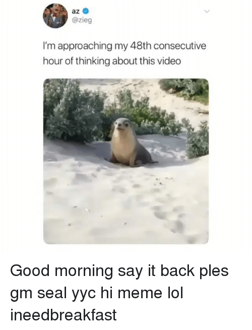 Meme Lol: az  @zieg  I'm approaching my 48th consecutive  hour of thinking about this video Good morning say it back ples gm seal yyc hi meme lol ineedbreakfast