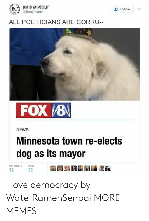Minnesota: Bøis Øpscur  BO  Follow  @BoisObscur  ALL POLITICIANS ARE CORRU--  FOX 8  NEWS  Minnesota town re-elects  dog as its mayor  LIKES  RETWEETS  32  32 I love democracy by WaterRamenSenpai MORE MEMES