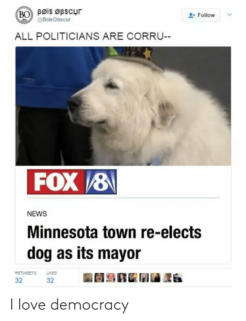 Minnesota: Bøis Øpscur  BO  Follow  @BoisObscur  ALL POLITICIANS ARE CORRU--  FOX 8  NEWS  Minnesota town re-elects  dog as its mayor  LIKES  RETWEETS  32  32 I love democracy