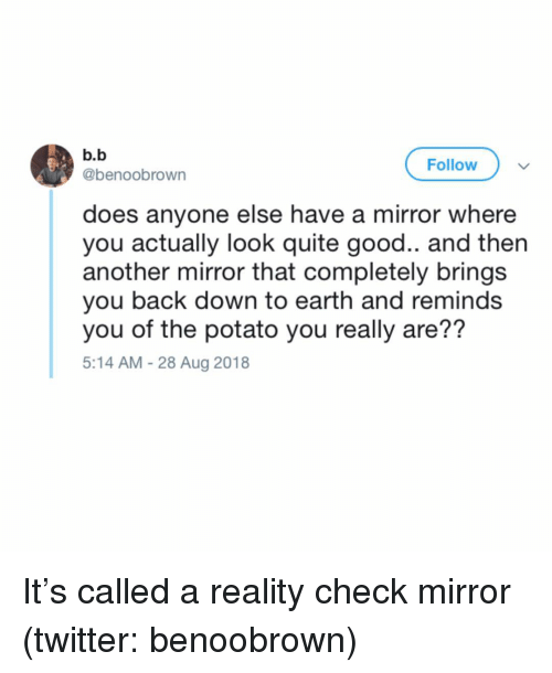 reality check: b.b  @benoobrown  Follow  does anyone else have a mirror where  you actually look quite good.. and then  another mirror that completely bring:s  you back down to earth and reminds  you of the potato you really are??  5:14 AM - 28 Aug 2018 It's called a reality check mirror (twitter: benoobrown)