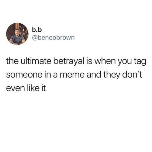 B. B.: b.b  @benoobrown  the ultimate betrayal is when you tag  someone in a meme and they don't  even like it