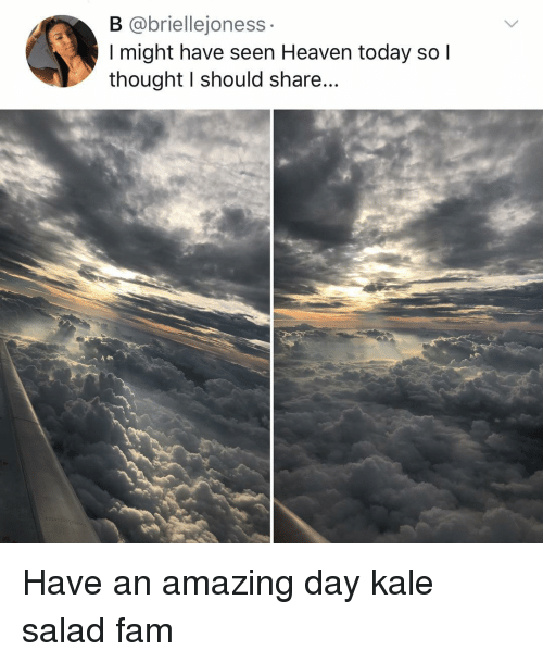 Fam, Heaven, and Memes: B @briellejoness  I might have seen Heaven today so l  thought I should share... Have an amazing day kale salad fam