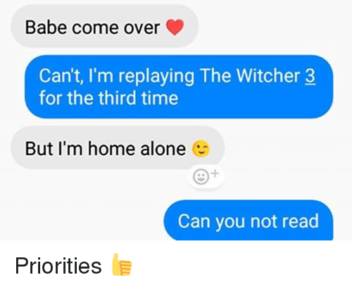 witcher 3: Babe come over  Can't, I'm replaying The Witcher 3  for the third time  But I'm home alone  Can you not read Priorities 👍