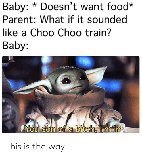 Food, Train, and Baby: Baby: * Doesn't want food*  Parent: What if it sounded  like a Choo Choo train?  Baby:  You son of a bitch, I'm in This is the way