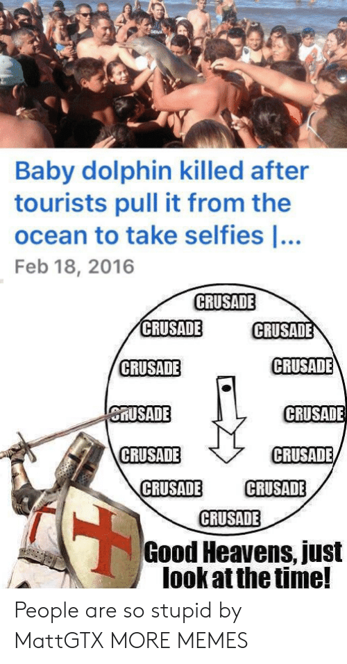 Just Look: Baby dolphin killed after  tourists pull it from the  ocean to take selfies ...  Feb 18, 2016  CRUSADE  CRUSADE  CRUSADE  CRUSADE  CRUSADE  CRUSADE  CRUSADE  CRUSADE  CRUSADE  CRUSADE  CRUSADE  CRUSADE  Good Heavens, just  look at the time! People are so stupid by MattGTX MORE MEMES