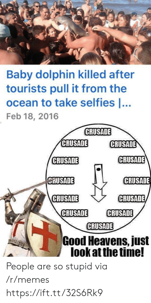 Just Look: Baby dolphin killed after  tourists pull it from the  ocean to take selfies ...  Feb 18, 2016  CRUSADE  CRUSADE  CRUSADE  CRUSADE  CRUSADE  CRUSADE  CRUSADE  CRUSADE  CRUSADE  CRUSADE  CRUSADE  CRUSADE  Good Heavens, just  look at the time! People are so stupid via /r/memes https://ift.tt/32S6Rk9