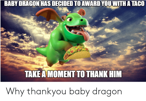 🅱️ 25+ Best Memes About Baby Dragon | Baby Dragon Memes