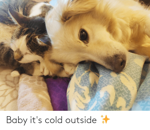 Cold: Baby it's cold outside ✨