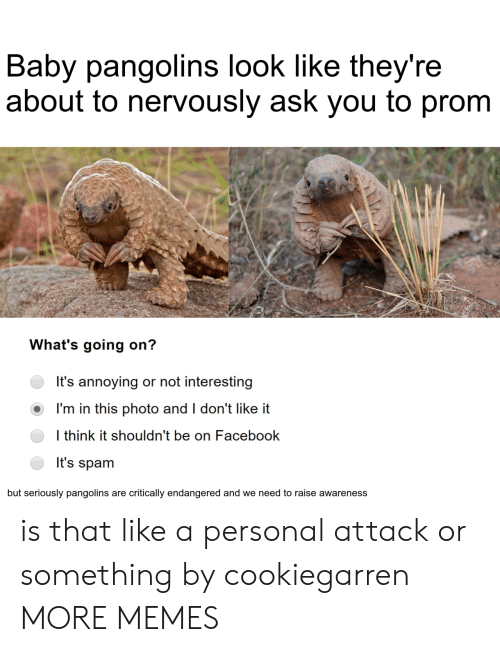 Dank, Facebook, and Memes: Baby pangolins look like they're  about to nervously ask you to prom  What's going on?  It's annoying or not interesting  I'm in this photo and I don't like it  I think it shouldn't be on Facebook  It's spam  but seriously pangolins are critically endangered and we need to raise awareness is that like a personal attack or something by cookiegarren MORE MEMES