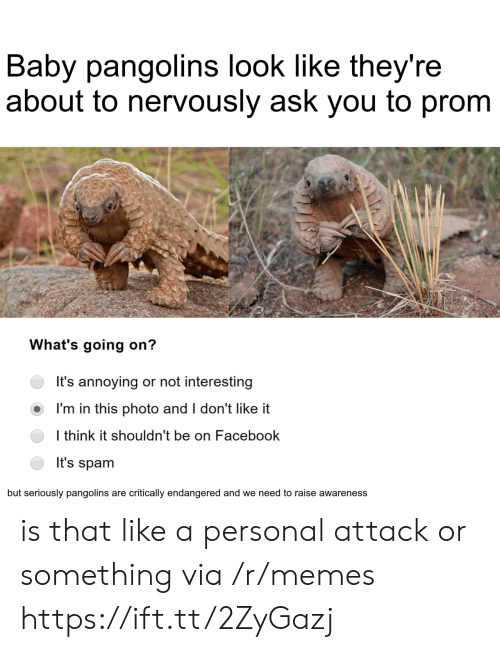Facebook, Memes, and Annoying: Baby pangolins look like they're  about to nervously ask you to prom  What's going on?  It's annoying or not interesting  I'm in this photo and I don't like it  I think it shouldn't be on Facebook  It's spam  but seriously pangolins are critically endangered and we need to raise awareness is that like a personal attack or something via /r/memes https://ift.tt/2ZyGazj